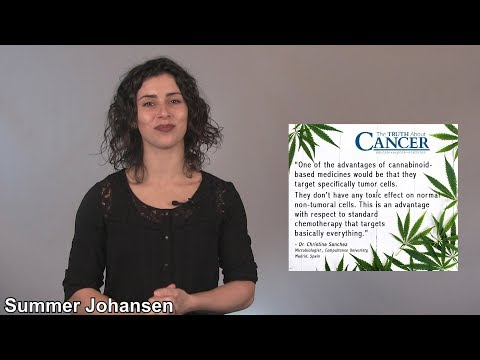 Cannabis & Bone Health