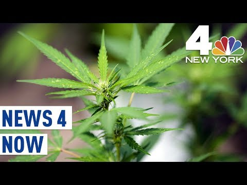 Could Legalized Marijuana Help Fix the New York City Subways? | News 4 Now