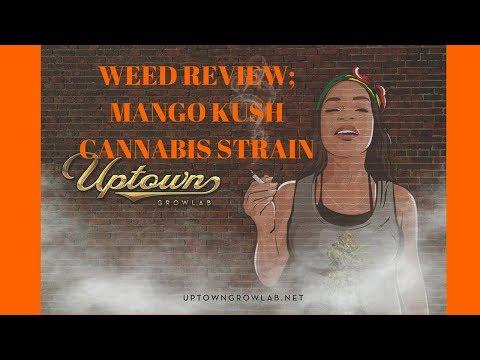 Weed Review: Mango Kush Cannabis Strain Review: Marijuana