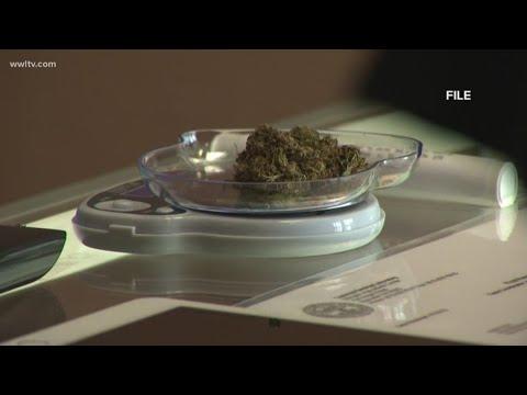 What's the delay on medical marijuana in Louisiana?