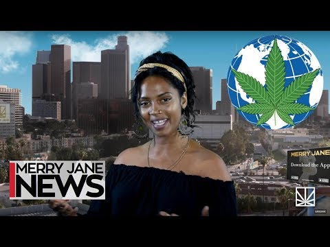 The U.N. Goes Big on Cannabis Reform | Baltimore Pushes for Social Justice | MERRY JANE NEWS