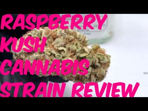 Raspberry Kush Cannabis Marijuana Weed Strain Review