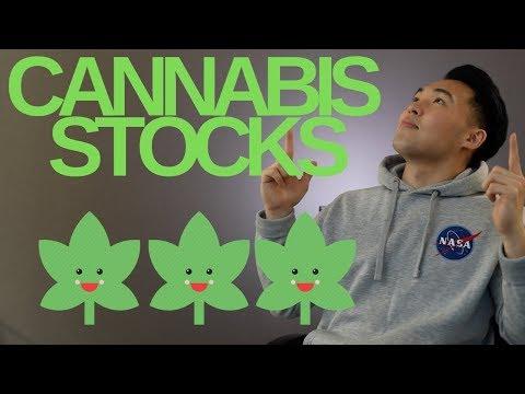 Should you Invest in Marijuana Stocks – BEST Cannabis Stocks