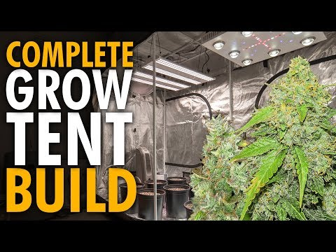 Building an Indoor Cannabis Grow Tent With CO2 No Smell