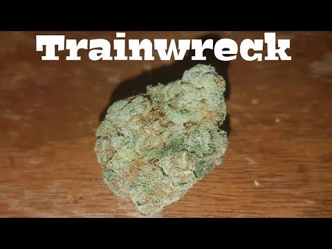 Canadian Cannabis Strain Review – Trainwreck