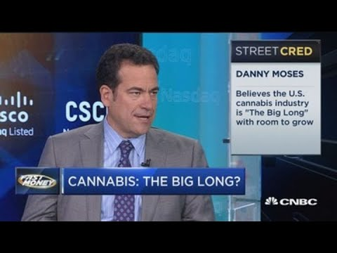 Legendary investor Danny Moses says the U.S. cannabis market is 'the big long'