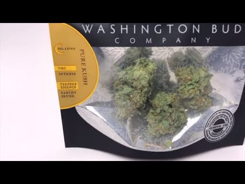 Weed Review: Pure Kush Cannabis Indica Strain Review