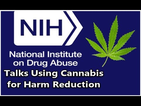 Medical Marijuana for Harm Reduction with the NIH