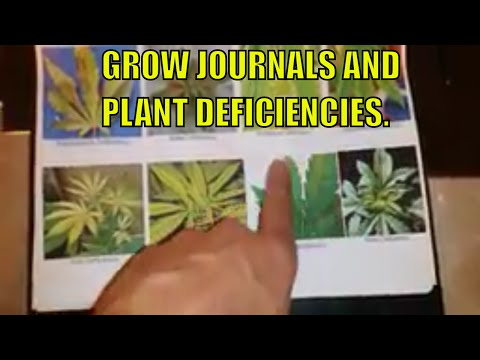 CANNABIS GROW JOURNAL.  DEFICIENCY CHART FOR CANNABIS PLANTS.