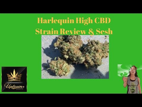 Harlequin High CBD Cannabis Strain Review