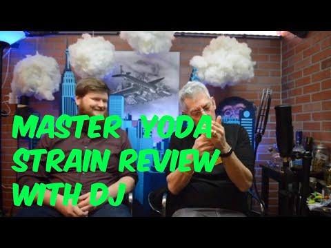 Master Yoda Cannabis Marijuana Weed Strain Review hashtag cannabis