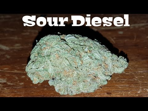 Canadian Cannabis Strain Review – Sour Diesel by High Attitude