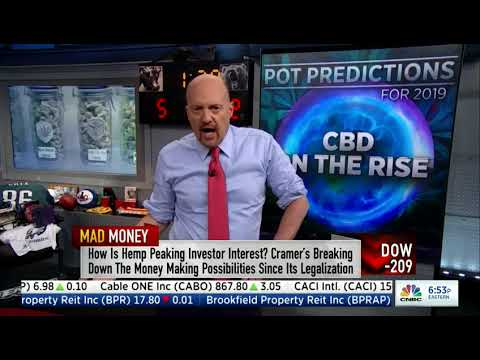 Marijuana Stocks 1-28-2019 Jim Cramer Segment
