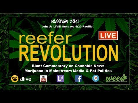Reefer Revolution [016] 2/24 Blunt Commentary Cannabis News, Pot Politics & Marijuana Media