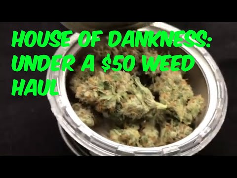 Under a Fifty at House of Dankness Cannabis Marijuana Weed Strain Review