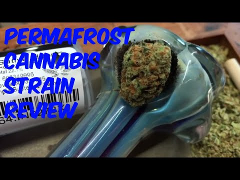 Perma Frost Cannabis Marijuana Weed Strain Review
