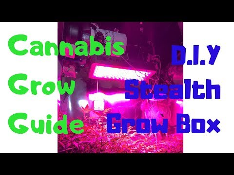 Growing Cannabis Indoors With DIY Stealth Grow Box and 5000 Subscriber Giveaway