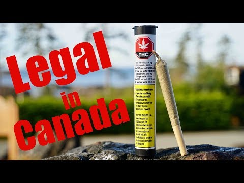 Buying Marijuana Online Legally in Canada