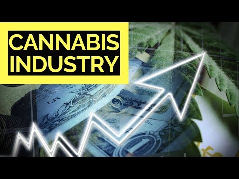 CANNABIS STOCK MARKET IS GROWING UP 🌿🌿🌿