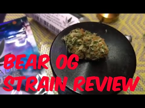 Bear OG Cannabis Marijuana Weed Strain Review