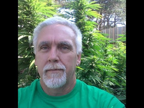 Episode 167: He Eliminated His Severe MS By Combining Cannabis With One Other Ingredient