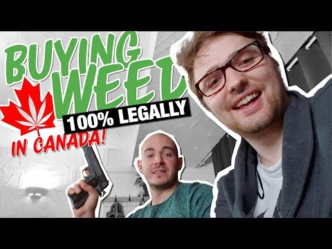 What Happened When Canada Legalized Cannabis  | Documentary Ft. OpenMind