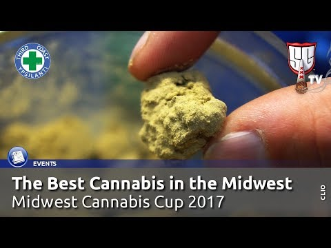 The Best Cannabis in the Midwest USA – High Times Midwest Cannabis Cup – Smokers Guide TV Michigan