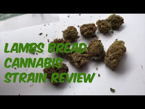 Lambsbread Cannabis Marijuana Weed Strain Review