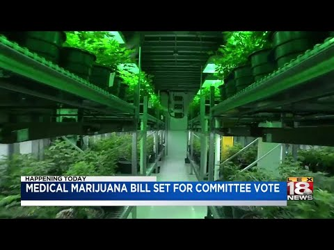 Medical Marijuana Bill Set For Committee Vote