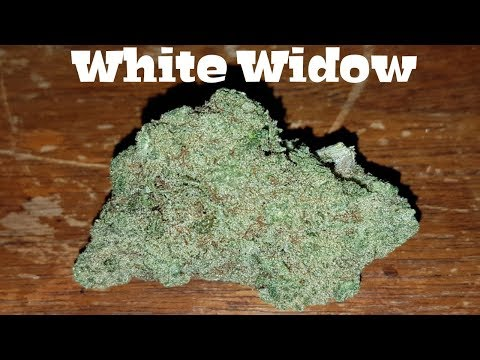 Canadian Cannabis Strain Review – White Widow by GetWeedOnline