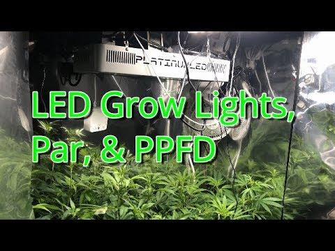 Flowering Week 1 PlatinumLED P300 Stealth Grow Box Medical Cannabis Grow  Light, PAR, And PPFD Talk