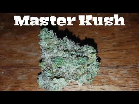 Canadian Cannabis Strain Review – Master Kush by Tilray