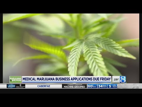Medical marijuana business applications due to GR Friday