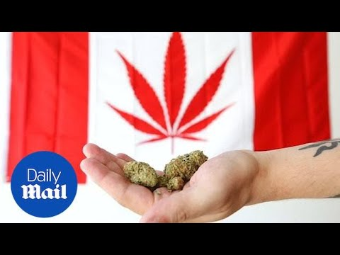 Canada legalizes cannabis for recreational use