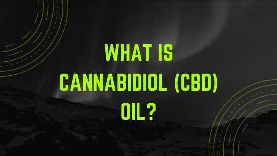 What-is-Cannabidiol-CBD-oil_ Find out The  Perks Of CBD Oil For Pain Relief