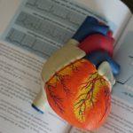 Heart-cbd-cover